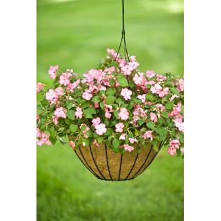 "Cobraco Growers Style 14"" Hanging Basket - White"