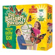 Insect Lore - Butterfly Pavilion at Kmart.com
