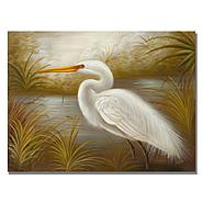 "Trademark Fine Art 26x32 inches Rio ""White Heron"" at Kmart.com"