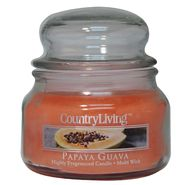 Country Living 9oz Jar Candle - Papaya Guava at Kmart.com