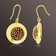 Chocolate Elegance Gold over Bronze Crystal Brown and White Circle Earrings at Sears.com