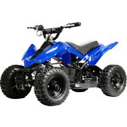 Generic, unbranded MotoTec 24v Mini Quad at Sears.com