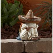 Desert Sleeping Statuary at Sears.com