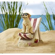 Beach Dog on Chair at Sears.com