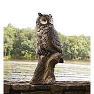 28in Owl Statue at Sears.com