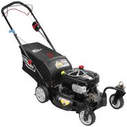 "Craftsman CX Series 21"" Rear Wheel Drive Mower at Sears.com"