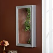Lily Wall-Mount Jewelry Mirror at Sears.com