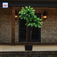 Garden Oasis Pre-Lit Double Palm Tree at Kmart.com