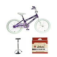 Mantis Kid's Bike with Pump & Tire Repair Kit Bundle at Sears.com