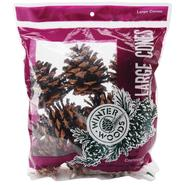 Ponderosa Pine Cones 8/Pkg Natural at Kmart.com