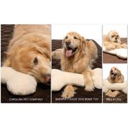 Carolina Pet Company Medium Bone Pillow Toy at Kmart.com