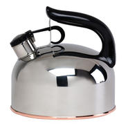 Essential Home Stainless Steel Tea Kettle at Sears.com