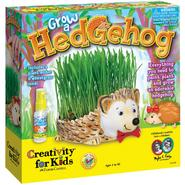 Creativity for Kids by Faber-Castell Grow A Hedgehog Kit at Kmart.com