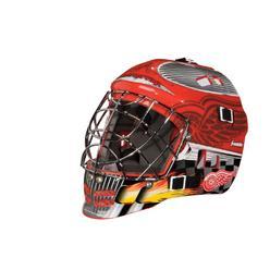 Franklin Sports NHL Detroit Red Wings Mini Goalie Mask at Kmart.com