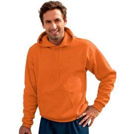 Hanes ComfortBlend® EcoSmart® Pullover Hoodie Sweatshirt at Kmart.com