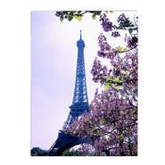 Trademark Fine Art Kathy Yates 'Eiffel Tower with Blossoms' Canvas Art at Kmart.com