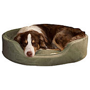 PAW Cuddle Round Suede Terry Pet Bed - Forest - XLarge at Kmart.com