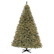 Donner and Blitzen 7.5' 600 Clear Light Pre-lit Sierra Cashmere Christmas Tree at Kmart.com