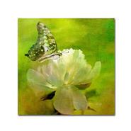 Trademark Fine Art Lois Bryan 'Malachite on Peony' Canvas Art at Kmart.com