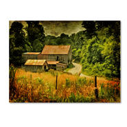 Trademark Fine Art Lois Bryan 'Country Road In Summer' Canvas Art at Sears.com