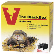 Victor Blackbox Gopher Trap at Kmart.com