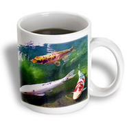 3dRose - Fishing - Chinese Koi Carp Fish - 11 oz mug at Kmart.com