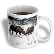 3dRose - Krista Funk Creations Moose - Moose Cow and Calf Eating Winter Branches in the Snowy Field 1 - 11 oz mug at Kmart.com