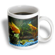 3dRose - Florene Fish - Koi Talk - 11 oz mug at Kmart.com