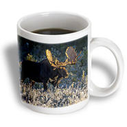 3dRose - VWPics Nature - Bull moose in early morning light and frost in Riding Mountain National Park, Manitoba, Canada - 15 oz mug at Kmart.com