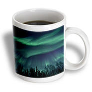 3dRose - Sandy Mertens Alaska  - Northern Lights in Shade of Green Amongst a Dark Blue Night Sky - 11 oz mug at Kmart.com