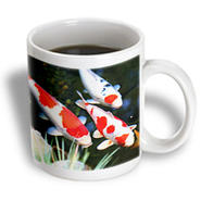 3dRose - Florene Fish - Japanese orange n White Koi Fish - 11 oz mug at Kmart.com