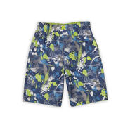 iXtreme Boy's Swim Trunks - Paint Brush Strokes at Sears.com