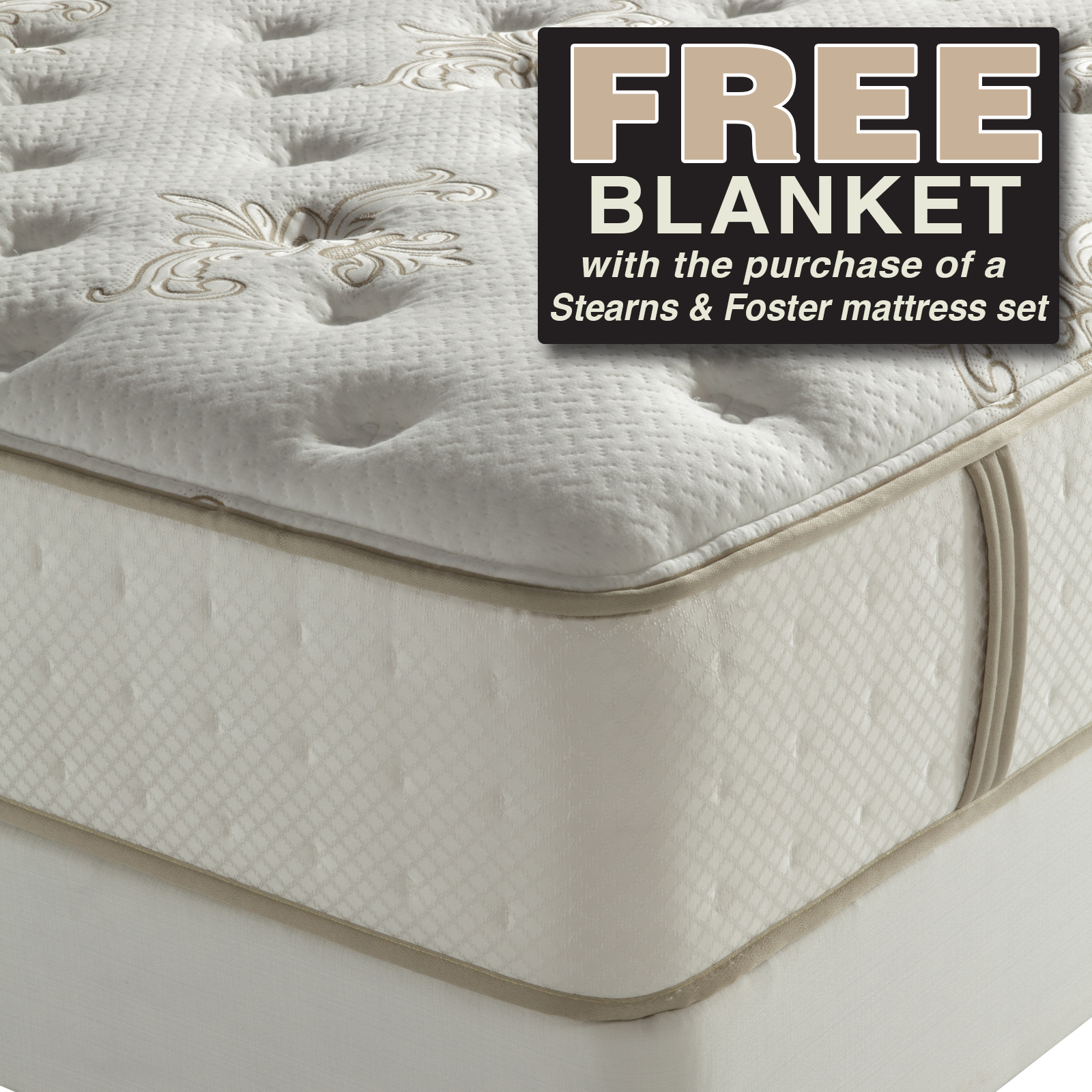 Plush-Queen-Mattress-Lois-II