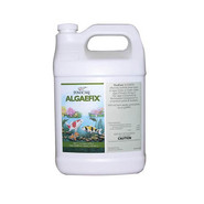 Mars Fishcare North America Inc. Api Treatment Pond Care Algaefix 1 gal. at Kmart.com