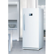Equator 13.7 cu.ft.E-Star Frost Free Upright Freezer at Sears.com