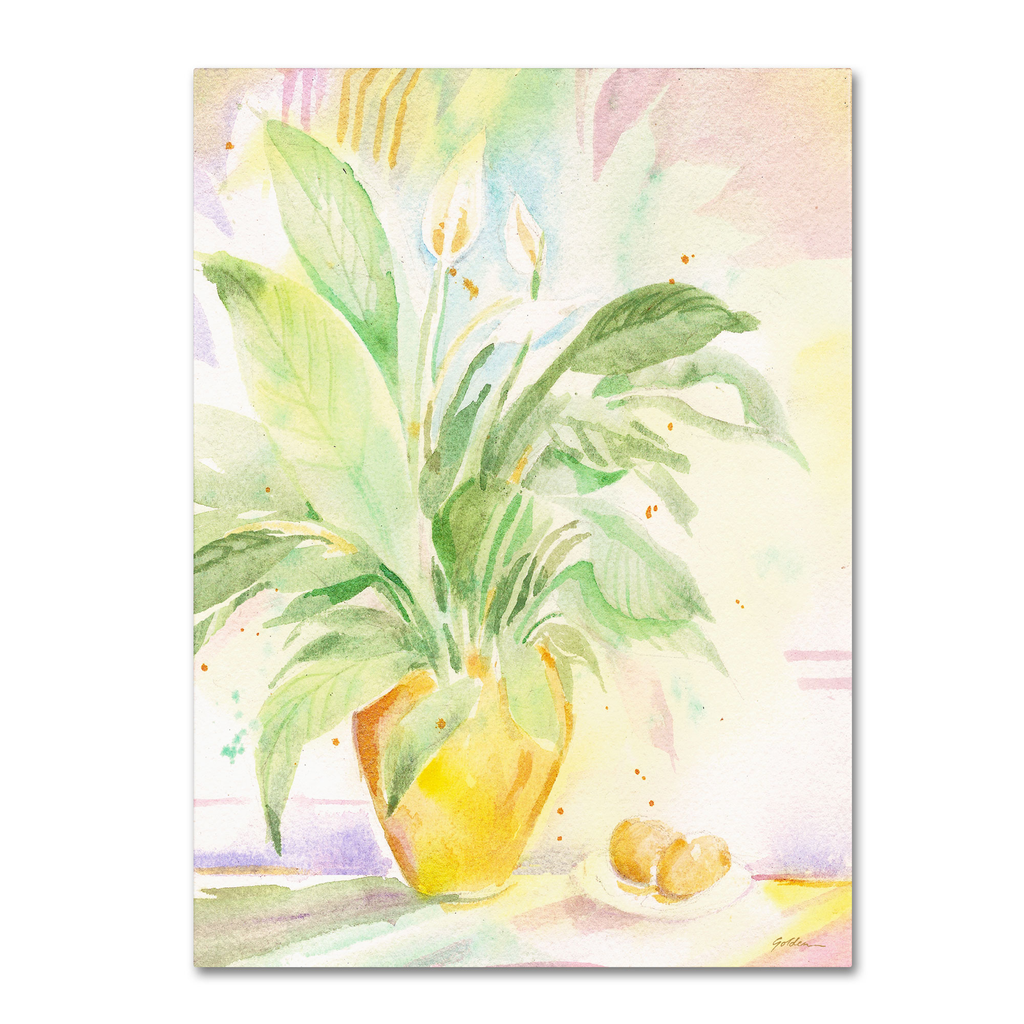 Trademark Fine Art Sheila Golden 'The Peace Lily' Canvas Art