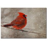Trademark Fine Art Lois Bryan 'Cardinal in Winter' Canvas Art at Kmart.com