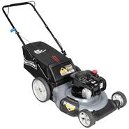 "Craftsman 140cc* Briggs & Stratton, 21"" Rear Bag Push Mower at Sears.com"