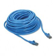 Belkin High Performance Cat6 UTP Patch Cable, 50ft, Blue at Kmart.com