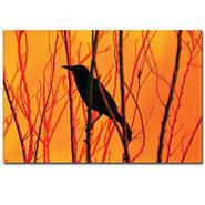 "Trademark Fine Art 14x19 inches ""Blackbird Dreams"" by Patty Tuggle at Kmart.com"