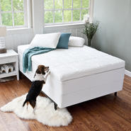 Night Therapy 4 Inch Memory Foam Mattress Topper at Sears.com