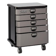 Craftsman Professional 5-Drawer Mobile Cabinet - Platinum at Sears.com