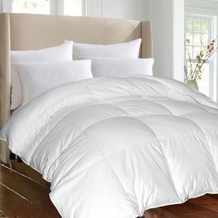 Hotel Grand Hotel Grand Oversized Luxury 1000 Thread Count Egyptian Cotton Down Alternative Comforter
