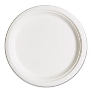 "MotivationUSA * Compostable Sugarcane Dinnerware, 10"" Plate, Natural White, 500/Carton at Sears.com"
