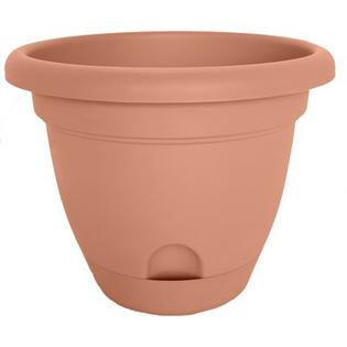 bloem Lucca Round Pot Planter (Set of 12) - Color: Terra Cotta, Size: 7