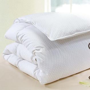 Wildon Home Polka Dot Cotton Goose Down Comforter in White - Size: Queen at Sears.com